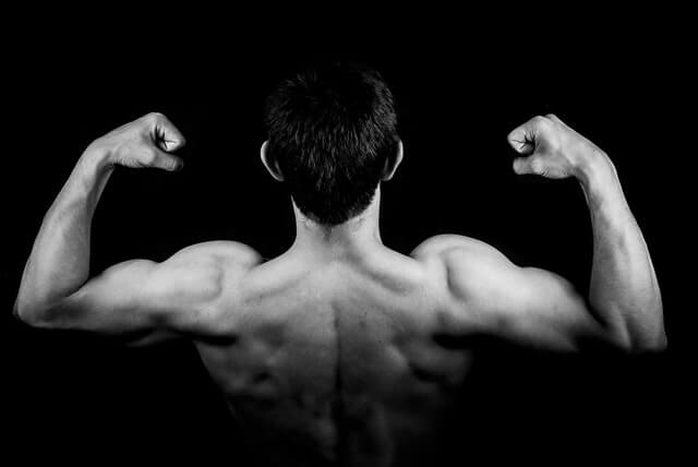 How to gain muscle mass naturally
