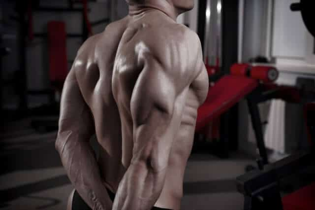 Best exercises for triceps