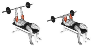Barbell triceps extension lying
