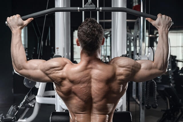 Best exercises for the back