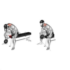 Seated neck extension